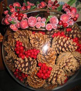 CI-pine-cones